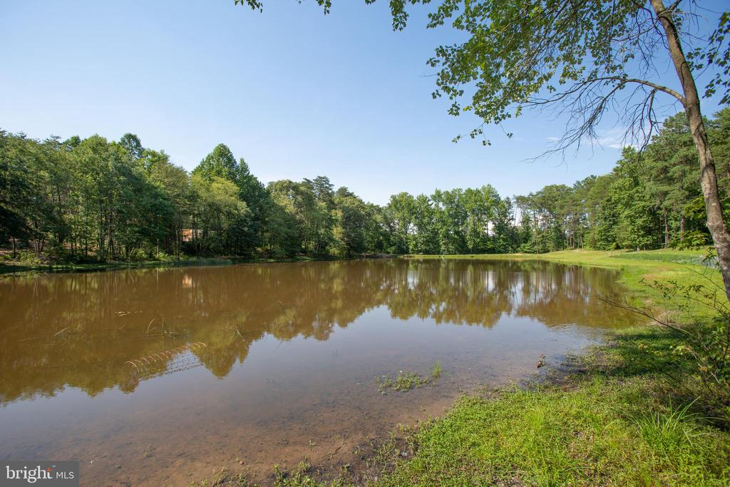 Imagine having coffee pond-side! - 7376 COURTHOUSE RD, SPOTSYLVANIA