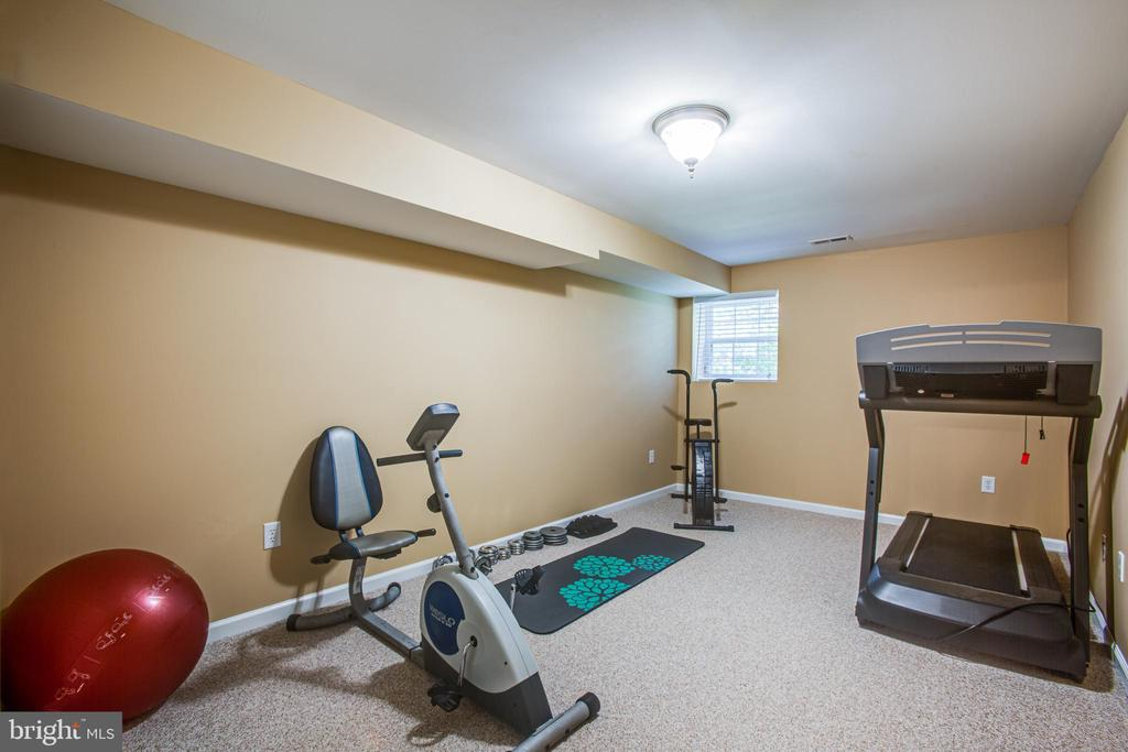 Basement bedroom, gym or craft room! - 7376 COURTHOUSE RD, SPOTSYLVANIA