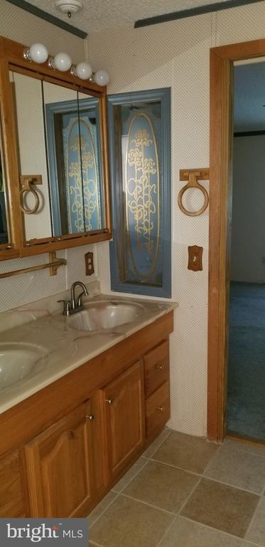 Master bath vanity - 31837 ZOAR RD, LOCUST GROVE