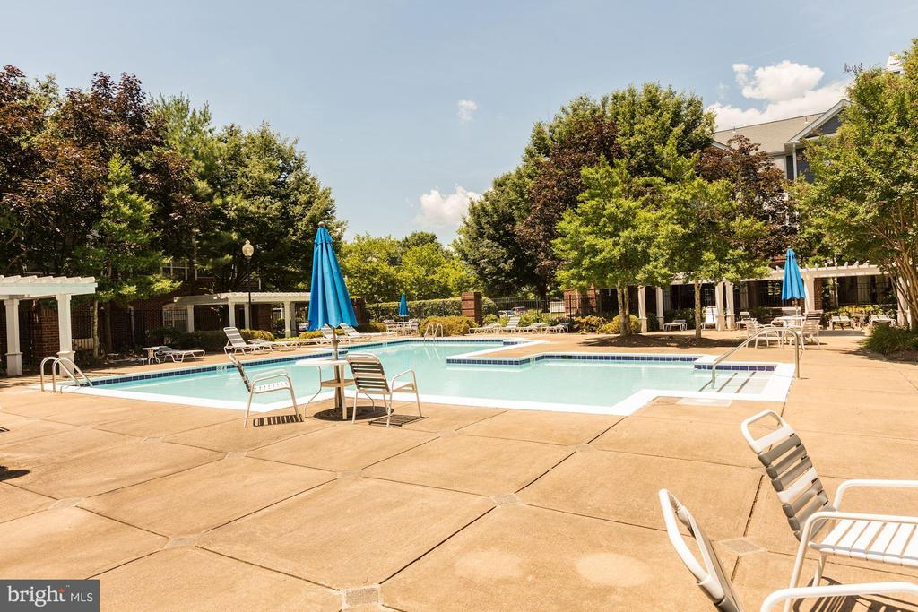Community Pool - 20313 BEECHWOOD TER #101, ASHBURN