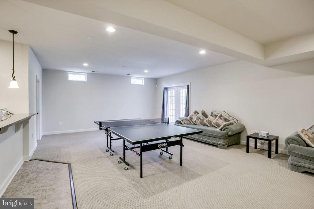 Recreation Room with Walk-out to Backyard - 42394 MADTURKEY RUN PL, CHANTILLY