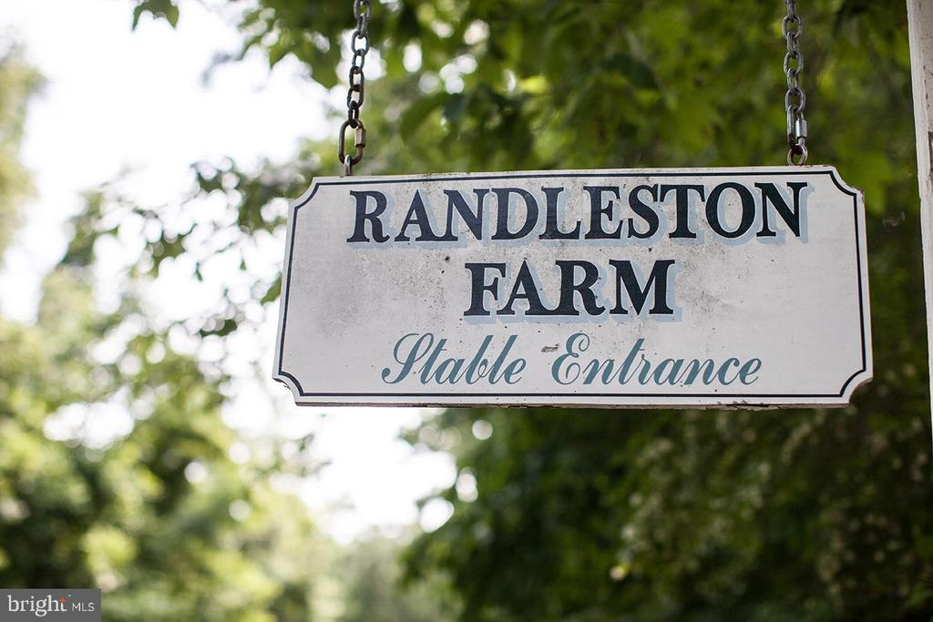 - 445 RANDLESTON LN, BLUEMONT
