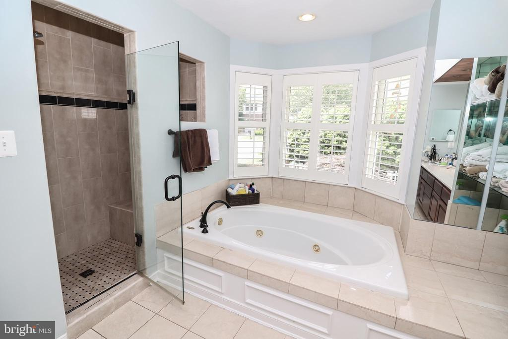 Master bath with jetted tub - 20456 TAPPAHANNOCK PL, STERLING