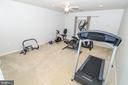 BR 6/ exercise room - 20456 TAPPAHANNOCK PL, STERLING