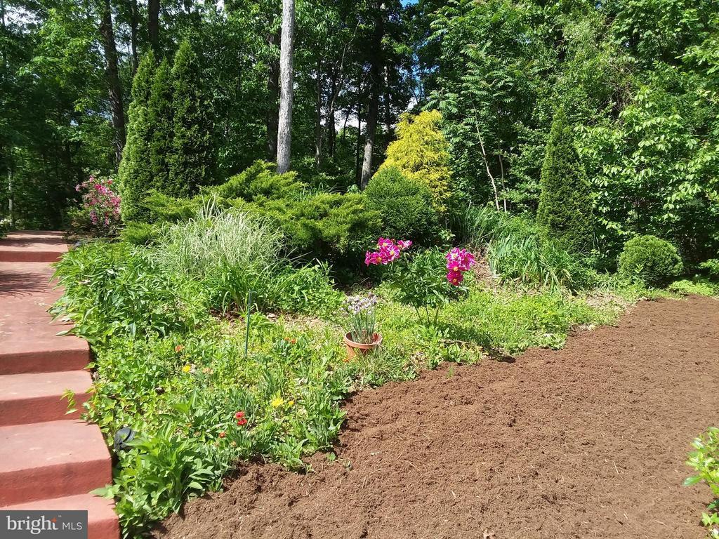 Beautiful landscaping - 15012 DOVEY RD, SPOTSYLVANIA