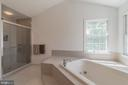 Master Bathroom - 25969 DONOVAN DR, CHANTILLY