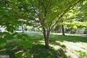 Lot Has Wooded Areas and Cleared Fields - 8183 PETERS RD, FREDERICK
