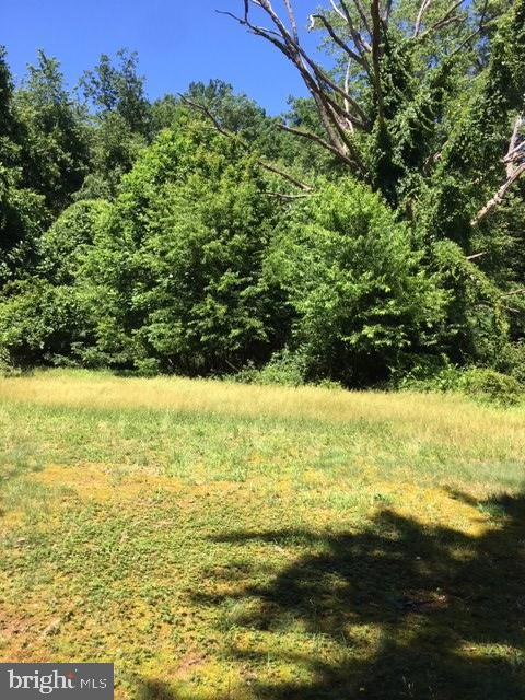 Expansive lot with two very private acres - 12626 OXON RD, HERNDON