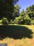 Privacy abounds here and so does the quiet! - 12626 OXON RD, HERNDON