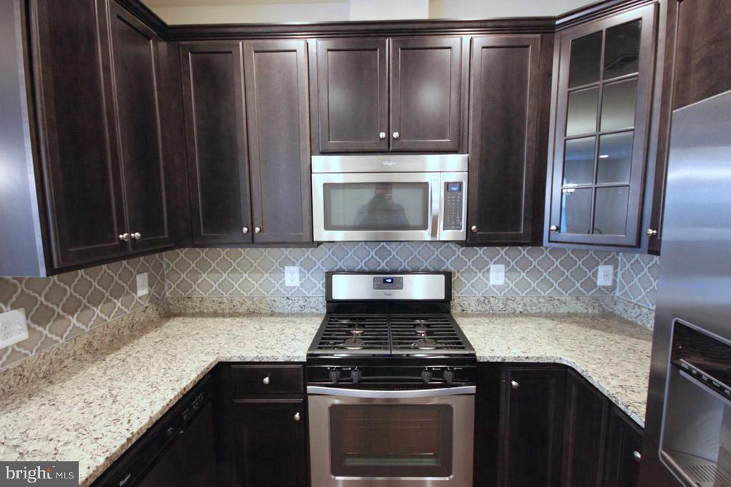 Gourmet upgraded kitchen - 44067 PEIROSA TER, CHANTILLY