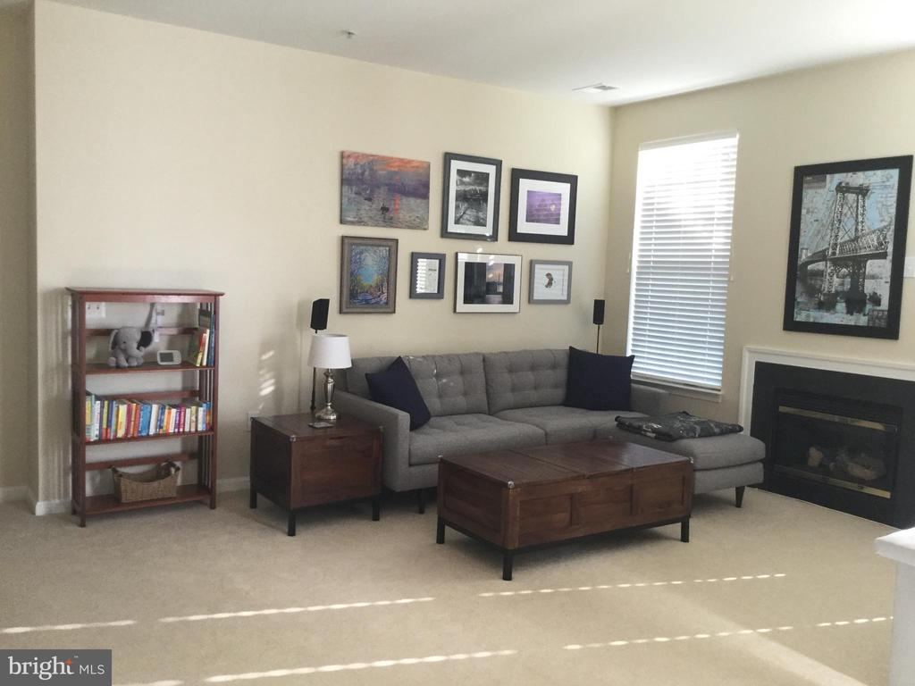 Living Room - 11506 SPERRIN CIR #305, FAIRFAX