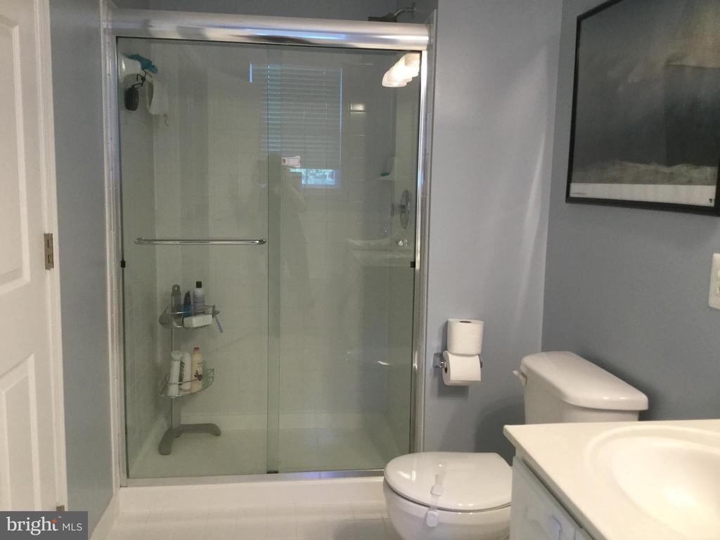 Master Bath Shower - 11506 SPERRIN CIR #305, FAIRFAX