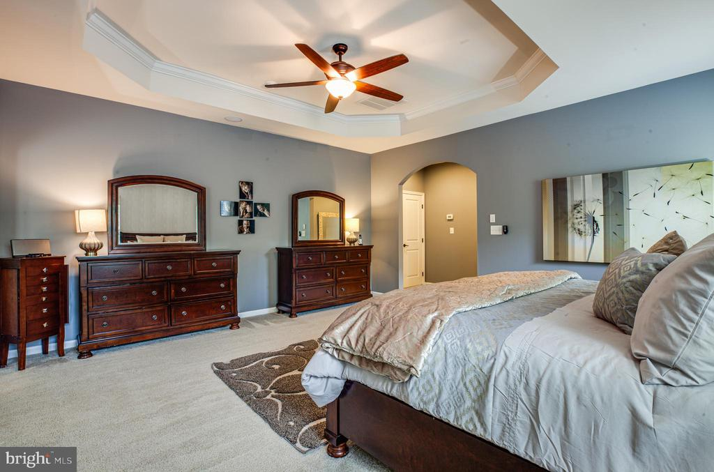 Loads of space in the master suite - 20 GENEVIEVE CT, FREDERICKSBURG