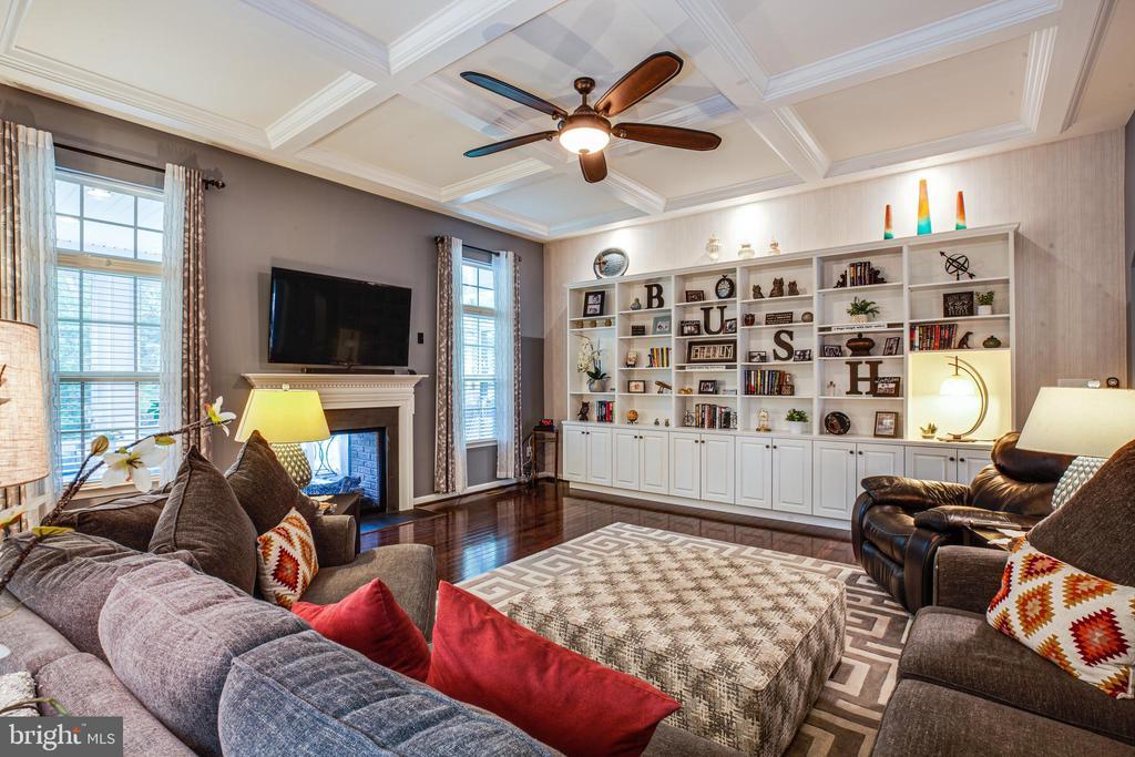 Custom shelves in the family room ! - 20 GENEVIEVE CT, FREDERICKSBURG