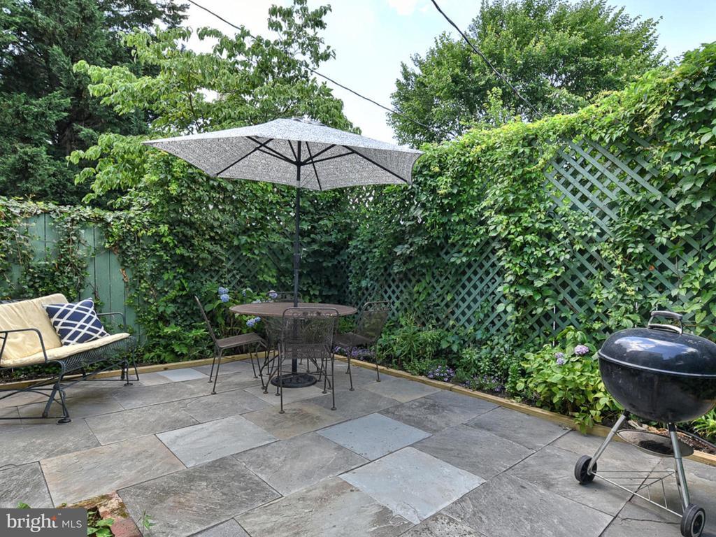 Welcoming slate patio! - 121 W 2ND ST, FREDERICK