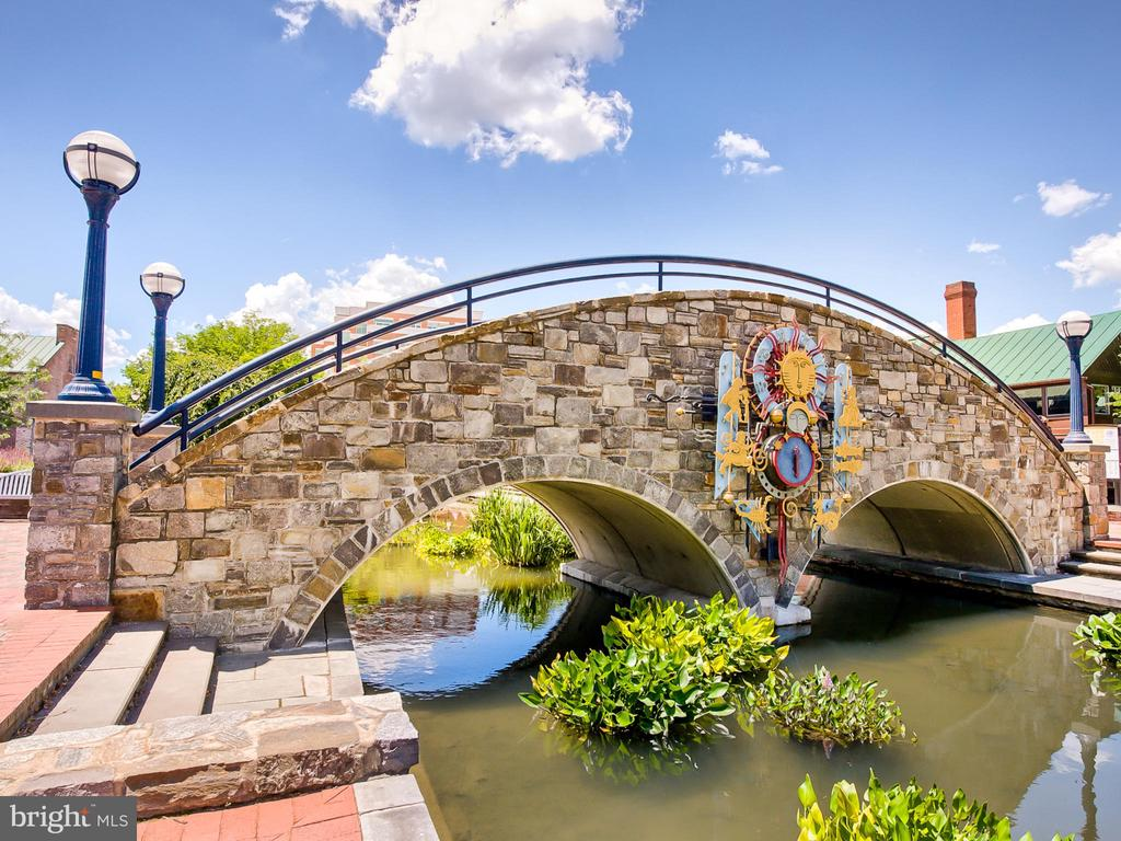 Endless adventures in  downtown Frederick! - 121 W 2ND ST, FREDERICK