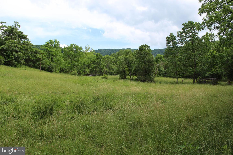أراضي للـ Sale في Stanley, Virginia 22851 United States