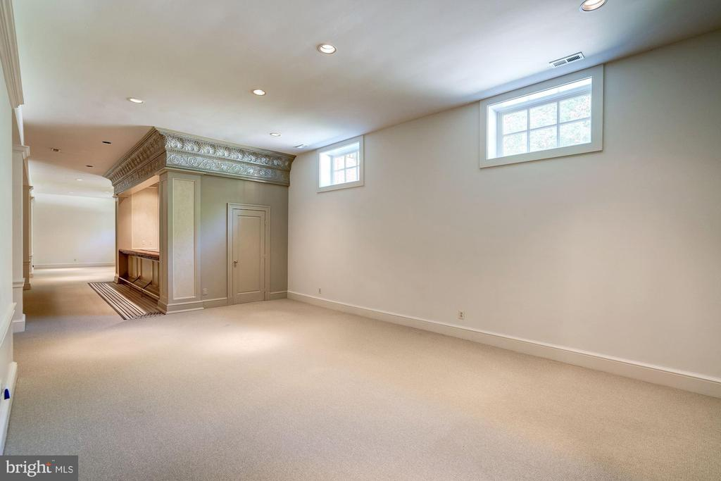 Lower Level Recreation Room - 929 LEIGH MILL RD, GREAT FALLS
