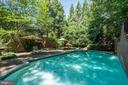 Luxury Pool - 929 LEIGH MILL RD, GREAT FALLS