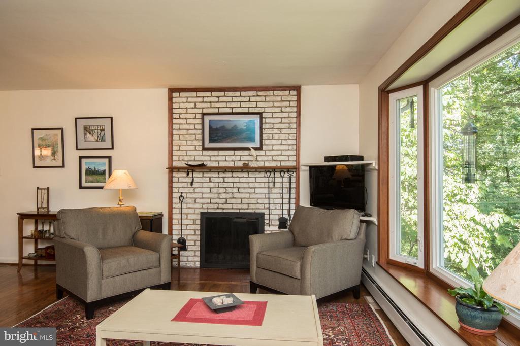 Living Room Interior - 20438 WHITE OAK DR, STERLING