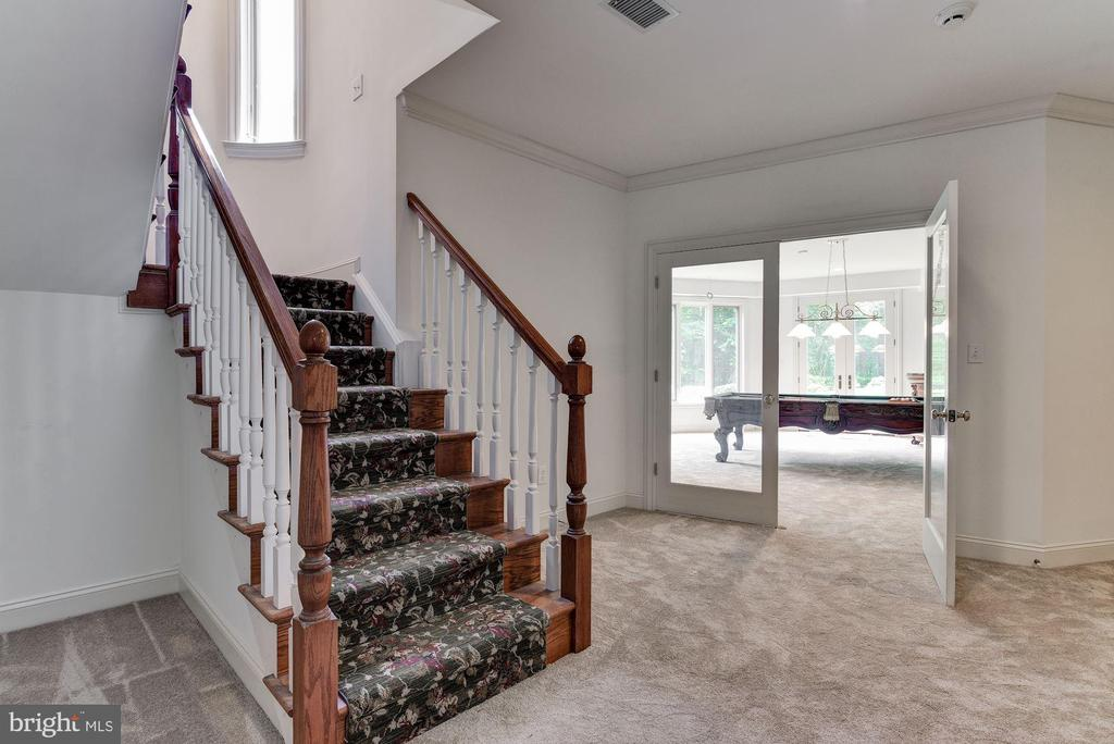 Lower Level - 9333 BELLE TERRE WAY, POTOMAC