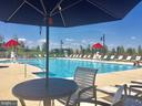The resort style pool - 17462 SPRING CRESS DR, DUMFRIES