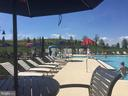 Cabanas, music, ah...vacation at home - 17462 SPRING CRESS DR, DUMFRIES