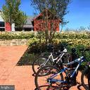 Bike to the pool - 17462 SPRING CRESS DR, DUMFRIES