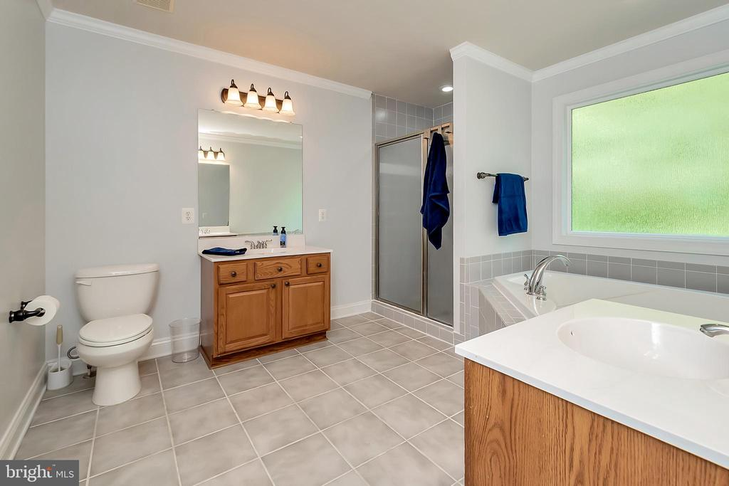 Upper Level Master bath with soaker - 41 KESTRAL LN, FREDERICKSBURG