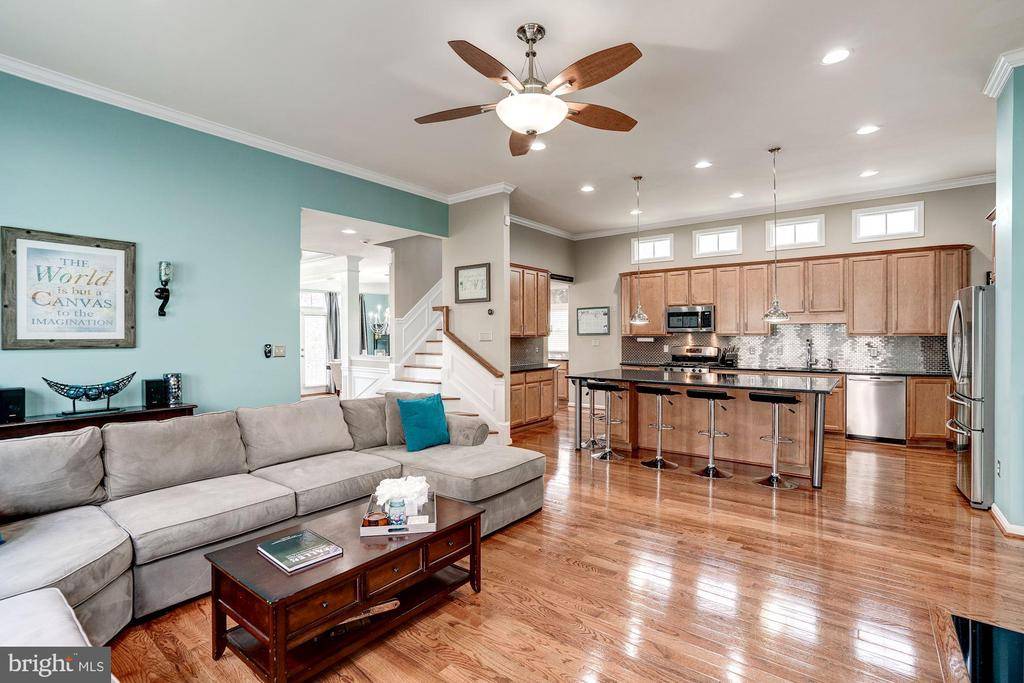 Family room & kitchen, perfect for entertaining - 25046 MINERAL SPRINGS CIR, ALDIE