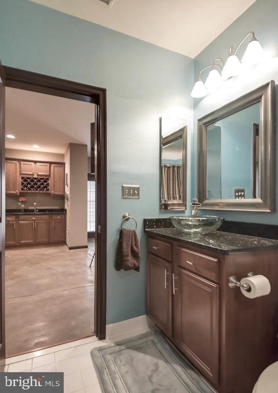 Lower level full bath w/ custom faucets/glass sink - 25046 MINERAL SPRINGS CIR, ALDIE
