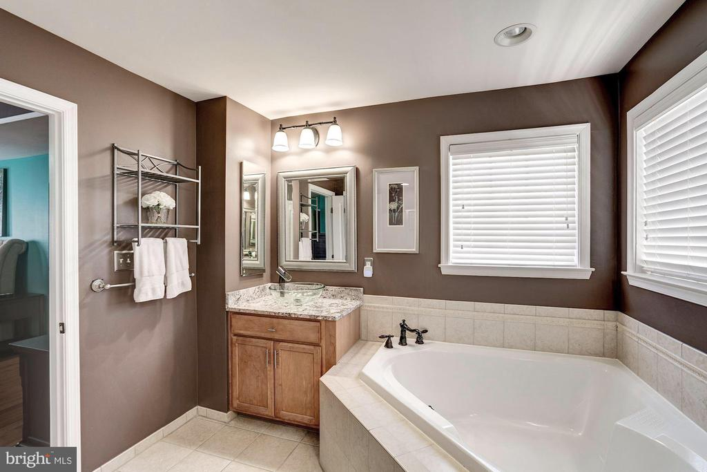 Beautiful master bath w/ large soaking tub - 25046 MINERAL SPRINGS CIR, ALDIE