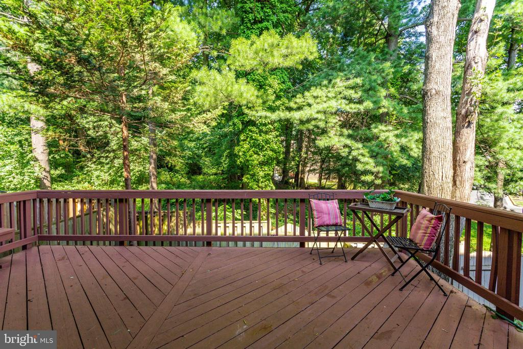 Entertain on this large deck - 1726 CY CT, VIENNA