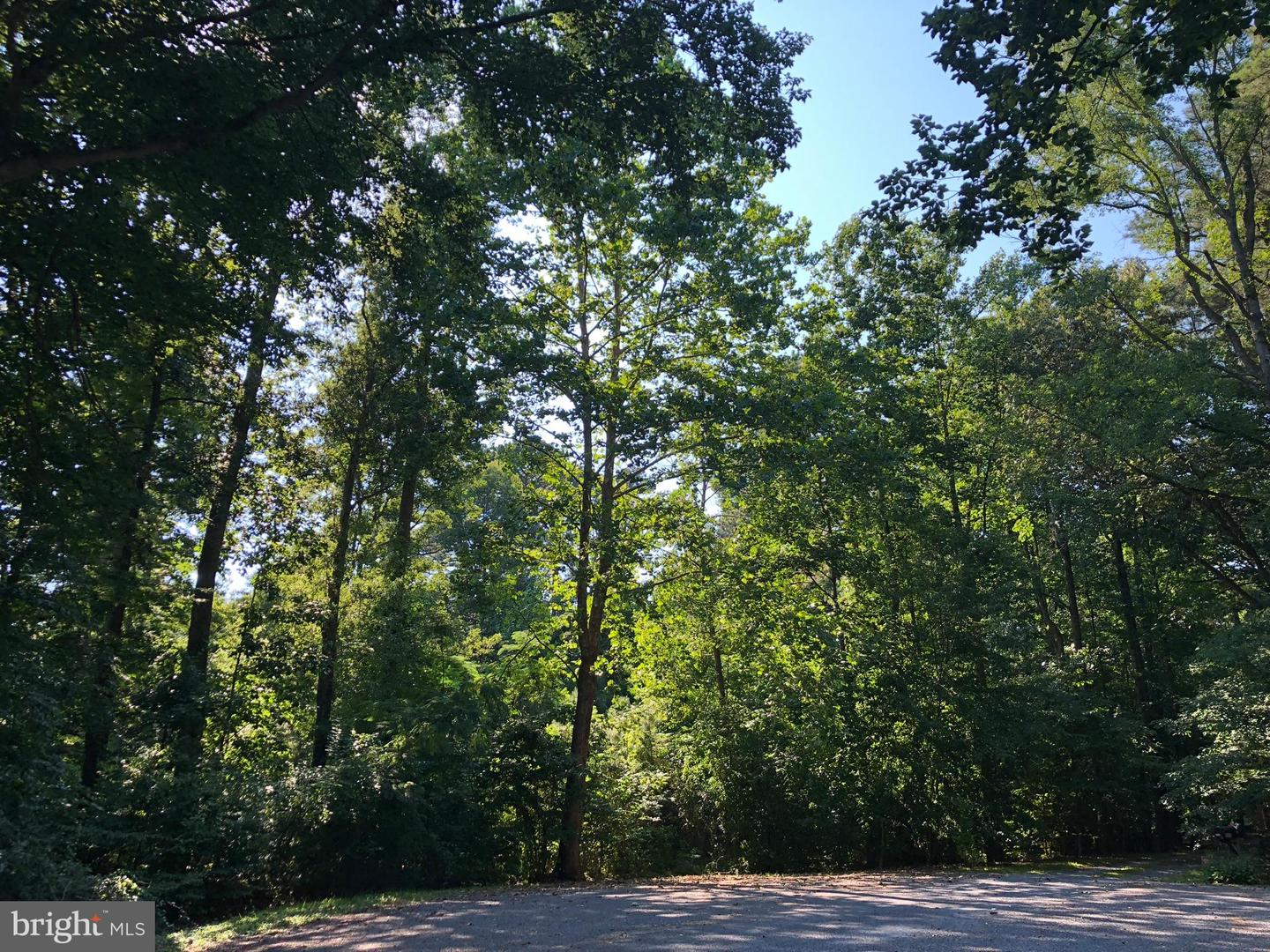 Property for Sale at Denton, Maryland 21629 United States