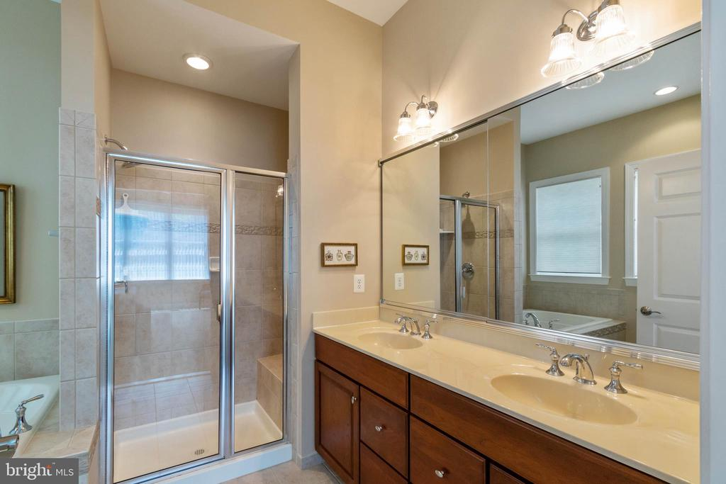 Master Bathroom - 15233 BRIER CREEK DR, HAYMARKET