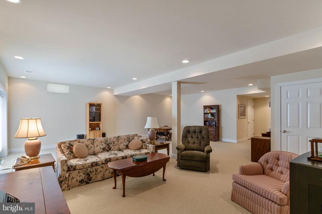 Lower Level Rec Rm - 15233 BRIER CREEK DR, HAYMARKET