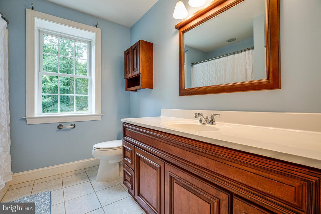 Basement full bath - 12401 TOWER RD, UNIONVILLE