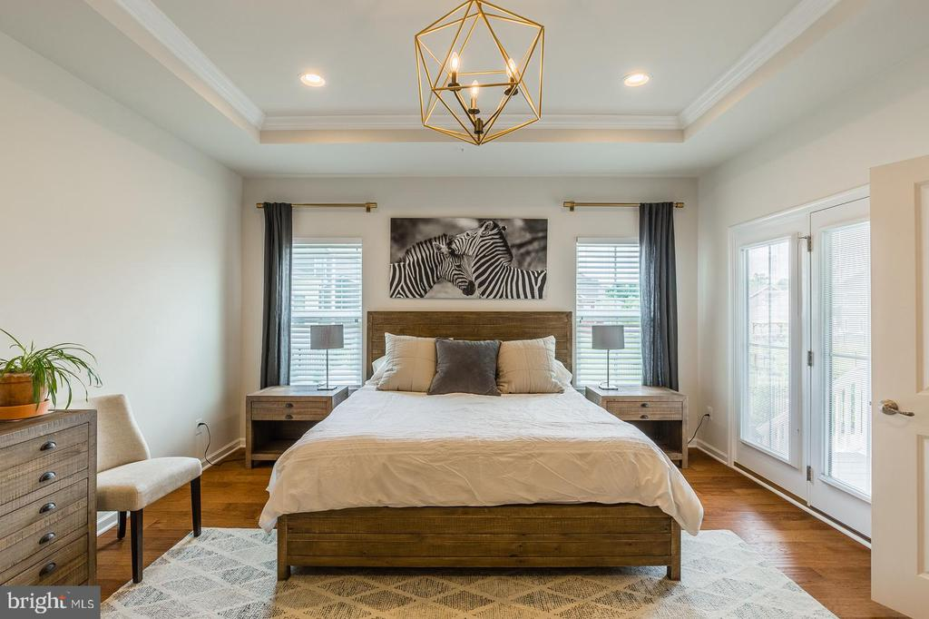 The master bedroom has tray ceilings & wood floors - 17462 SPRING CRESS DR, DUMFRIES