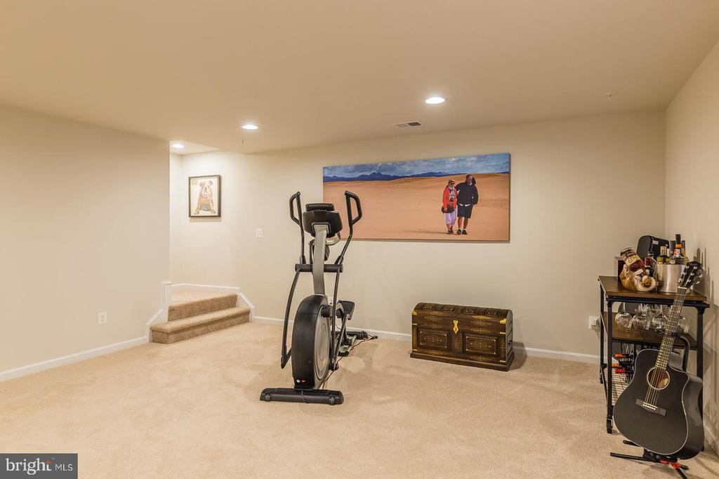 The rec room in lower level - 17462 SPRING CRESS DR, DUMFRIES