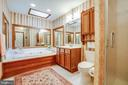 Master bath w/jetted tub - 9708 COURTHOUSE RD, SPOTSYLVANIA