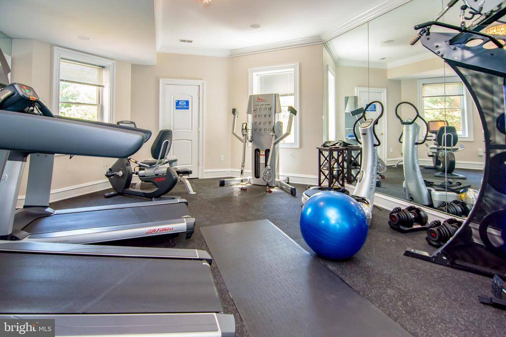 Basement exercise room - 529 SPRINGVALE RD, GREAT FALLS