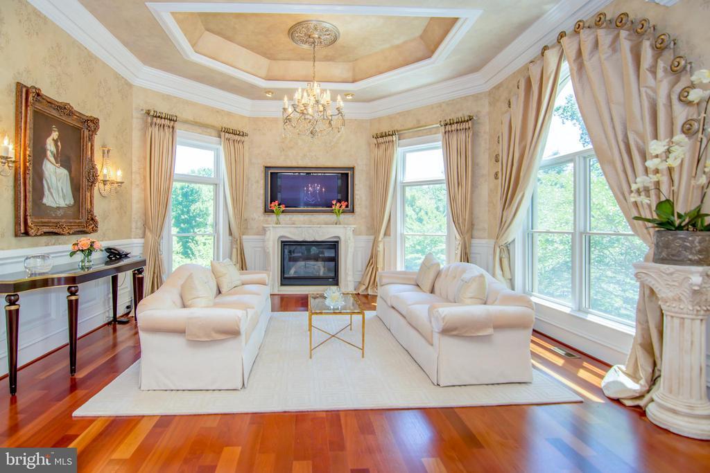 Living room - 529 SPRINGVALE RD, GREAT FALLS