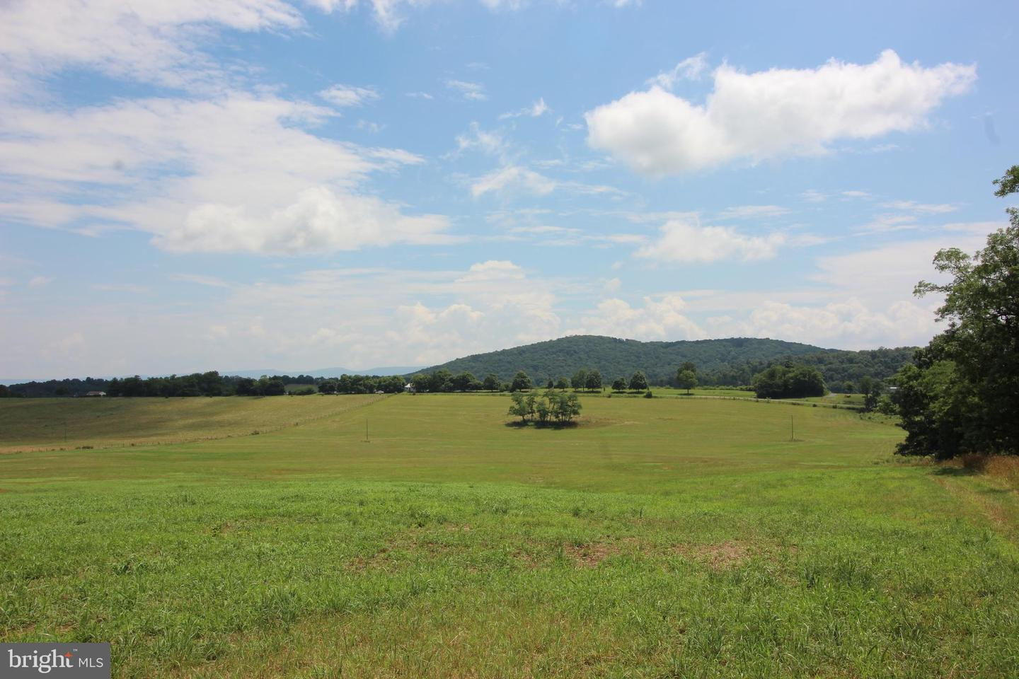 Land for Sale at Mount Jackson, Virginia 22842 United States