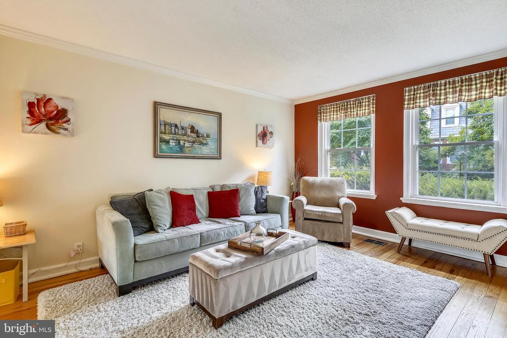 Accented with newer windows - 4456 36TH ST S, ARLINGTON