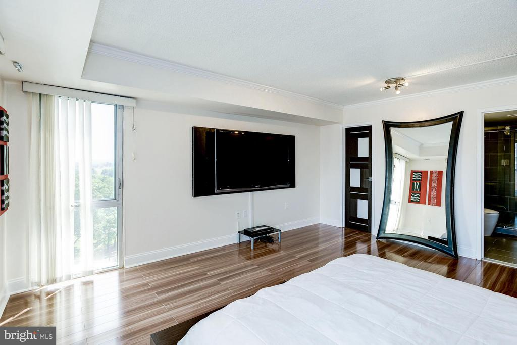 Spacious owner's suite - 1300 ARMY NAVY DR #922, ARLINGTON