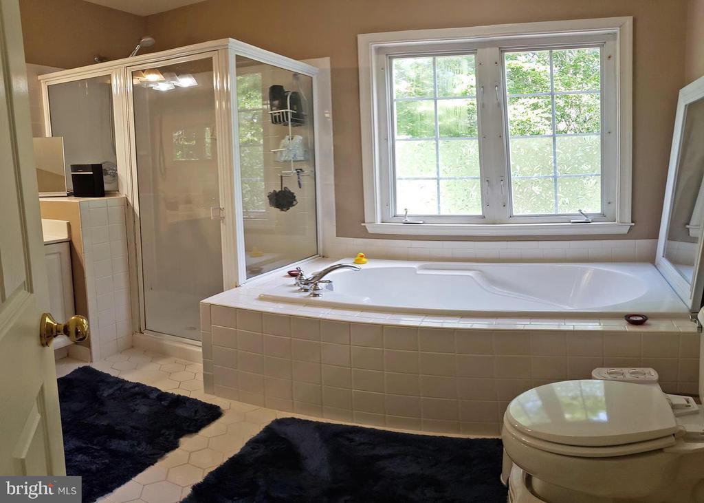 Master Bathroom - 46871 REDFOX CT, STERLING