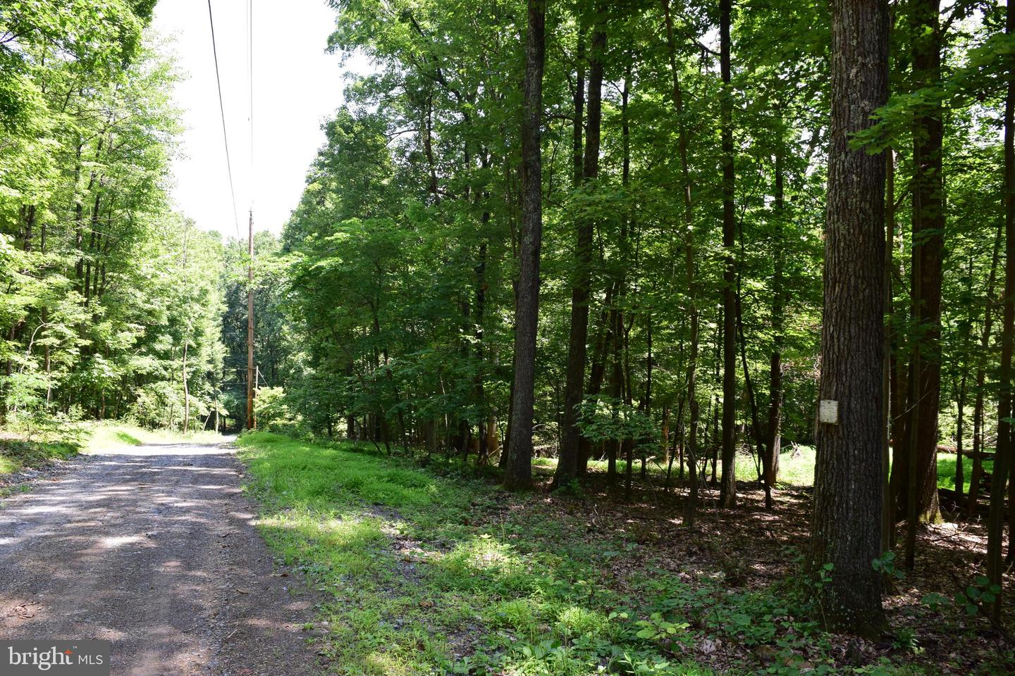 Land for Sale at Happy Valley Ln Berkeley Springs, West Virginia 25411 United States