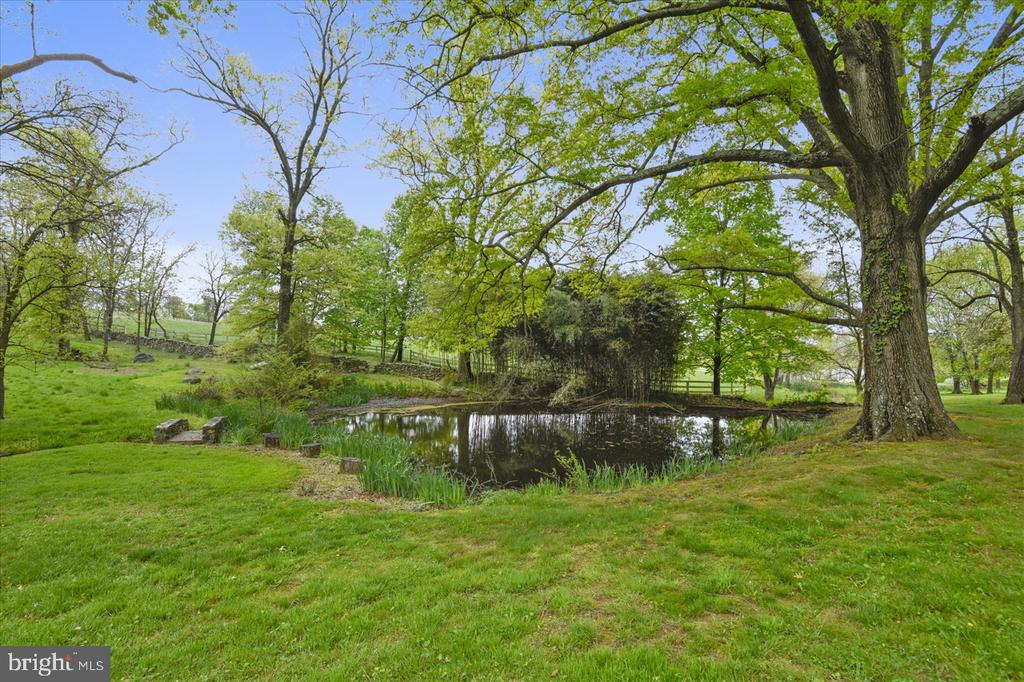 pond - 22282 CATESBY FARM LN, MIDDLEBURG