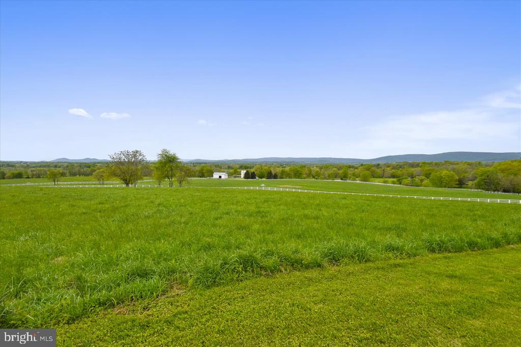 View - 22282 CATESBY FARM LN, MIDDLEBURG