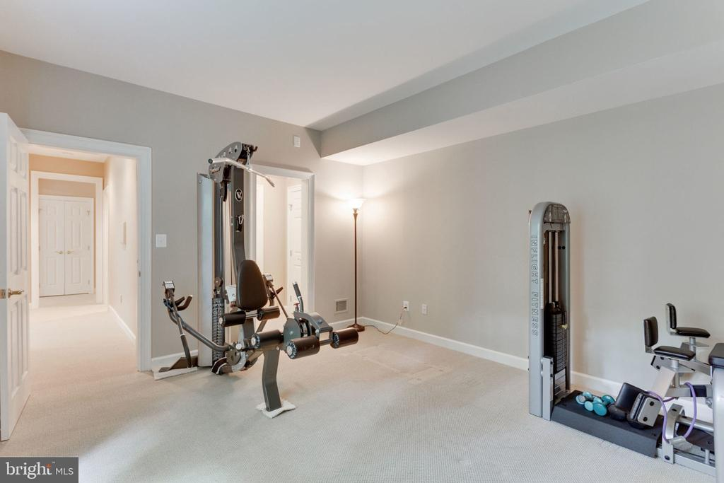 Lower level den/weight room/potential 5th bedroom - 3111 WINDSONG DR, OAKTON